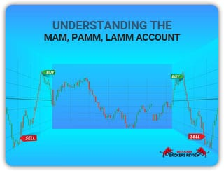 MAM, PAMM, LAMM Account: Everything you Need to Know